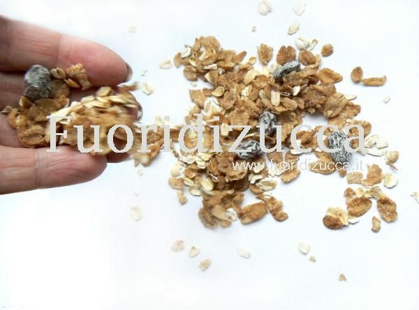 biscotti corn flakes